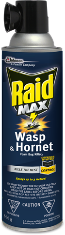 Raid® Max Wasp & Hornet Foam Bug Killer