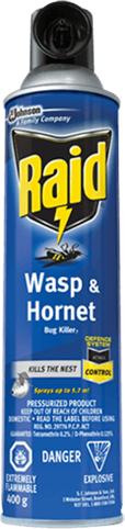 Raid® Wasp & Hornet Bug Killer 7