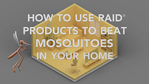 get rid of mosquitoes