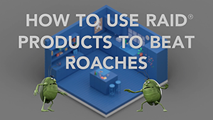 How To Use Raid Products To Beat Roaches